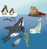 Noordzeedieren Stock Illustratie