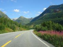 Noorse fjorden royalty-vrije stock fotografie
