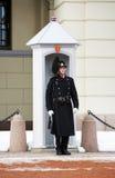 Noorse Koninklijke Wacht dichtbij Royal Palace, Oslo Stock Afbeeldingen