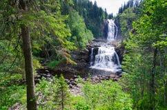 Noorse natuurlijke waterval Stock Foto's