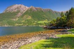 Noorse overzeese fjord onder de berg Royalty-vrije Stock Foto's