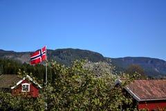 Noorse vlag Stock Afbeeldingen