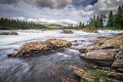 Noorse wildernis Stock Afbeeldingen