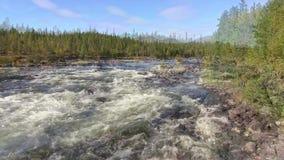 noorwegen Woedende rivier in Engerdal stock footage