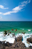 Noosa Beach - Queendsland - Australia Royalty Free Stock Photo