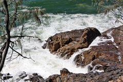 Noosa National Park Stock Image