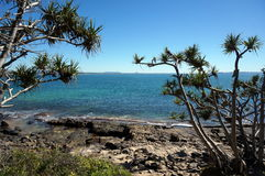 Noosa National Park view Royalty Free Stock Photography
