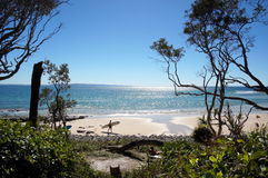 Noosa National Park view royalty free stock photos