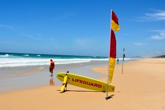 Surf lifesaver at Sunshine Beach south of Noosa, QLD. Noosa, Queensland, Australia - December 20, 2017. Surf lifesaver near red-yellow flag and rescue board at royalty free stock image