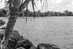 Noosa River Stock Image