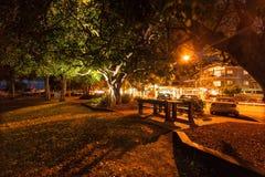 Noosa River Sunset royalty free stock photos