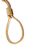 Noose. Hanging noose rope isolated on white Stock Photography