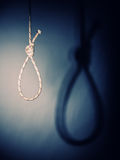 Noose. Fine image of classic noose and shadow Royalty Free Stock Image