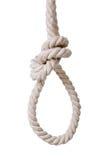 Noose. Isolated on white background Stock Photo