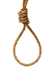 Noose. A ready made noose on a white background Stock Images