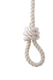 Noose. White rope noose isolated on white Royalty Free Stock Images