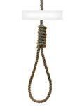 The noose. Noose with free space for your text Royalty Free Stock Photography
