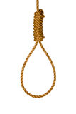 Noose Stock Images