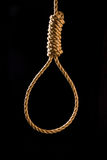 Noose Stock Image