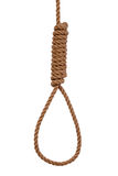 Noose isolated on white Royalty Free Stock Photo