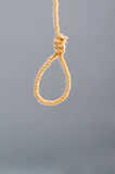 Noose made of rope Stock Photos
