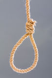 Noose made of rope Stock Image