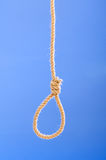 Noose made of rope Stock Images