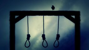 Nooses Hanging on The Gallows with a Raven on a Cloudy Day stock footage