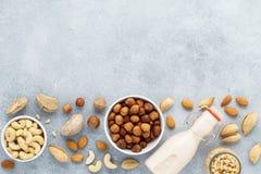 Nootmelk en diverse ingrediënten Vrije zuivelfabriek, geen lactose stock afbeelding