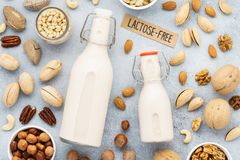 Nootmelk en diverse noten Substituut van de lactose het vrije melk royalty-vrije stock foto's