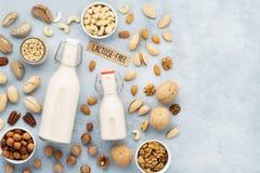 Nootmelk en diverse noten Substituut van de lactose het vrije melk royalty-vrije stock foto