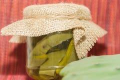 Nopal conservado en vinagre en vinagre y sal foto de archivo
