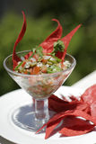 Nopales ceviche Royalty Free Stock Images
