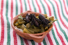 Nopales com besouro, alimento mexicano imagem de stock royalty free