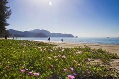 Nopparat beach Royalty Free Stock Photography