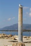 Nora Ruins Sardinia Royalty Free Stock Images
