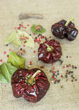 Nora spanish dried peppers. With peppercorns on textile background royalty free stock images