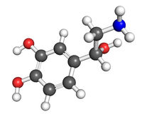 Noradrenaline molecule. Ball and stick model. Atoms are colored according to convention Stock Images