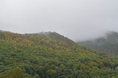 Nord-Carolina Mountains im Fall-Morgen-Nebel Lizenzfreie Stockfotografie