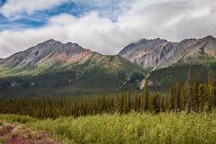 A nord dell'intestazione di Haines Junction verso il territorio di Yukon del lago Kluane Canada Fotografia Stock Libera da Diritti