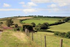 Nord-Devon-Bauernhoffelder England Stockbilder