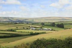 Nord-Devon Farmland England Stockbilder