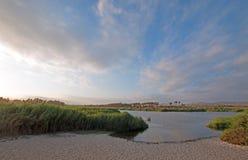 Nord för shoreline för San Jose Del Cabo Lagoon/bred flodmynningnaturreserv precis av Cabo San Lucas Baja Mexico arkivfoto