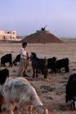 1993 nord Irak - Kurdistan Photographie stock libre de droits