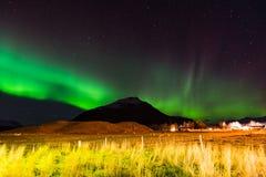 Nord- Lichter in Hornafjordur in S?d-Island lizenzfreie stockfotografie