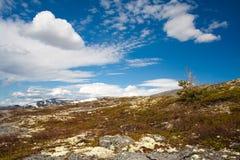 Nord mountains. At spring, cola peninsula Royalty Free Stock Photos