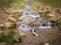 Nord-Nationalpark Colorados Estes Park Colorado Rocky Mountain Lizenzfreie Stockfotos