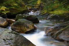 Nord-ovest pacifico che fa un'escursione il fondo delle montagne del paesaggio Fotografie Stock Libere da Diritti