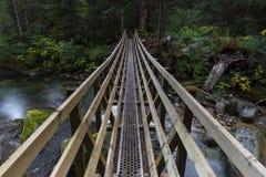Nord-ovest pacifico che fa un'escursione il fondo delle montagne del paesaggio Fotografia Stock