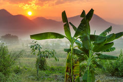Nord-Thailand Lizenzfreie Stockbilder